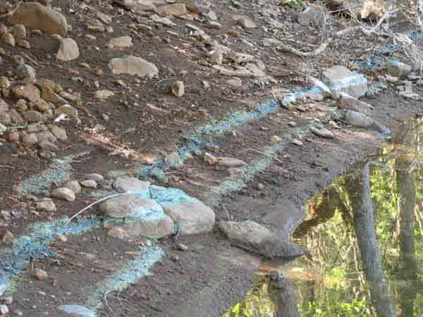 Lost Creek bluish mats