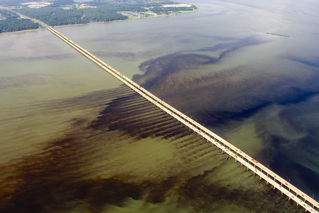 Aerial photo of what is likely a blooom of <i>Cochlodinium polykrikoides</i> in the James River near the Monitor-Merrimack Bridge.  The bloom extends from above the James River Bridge downstream into the main-stem  and western branch of the Elizabeth River as well as into the Lafayette River. Photo by Wolfgang K. Vogelbein