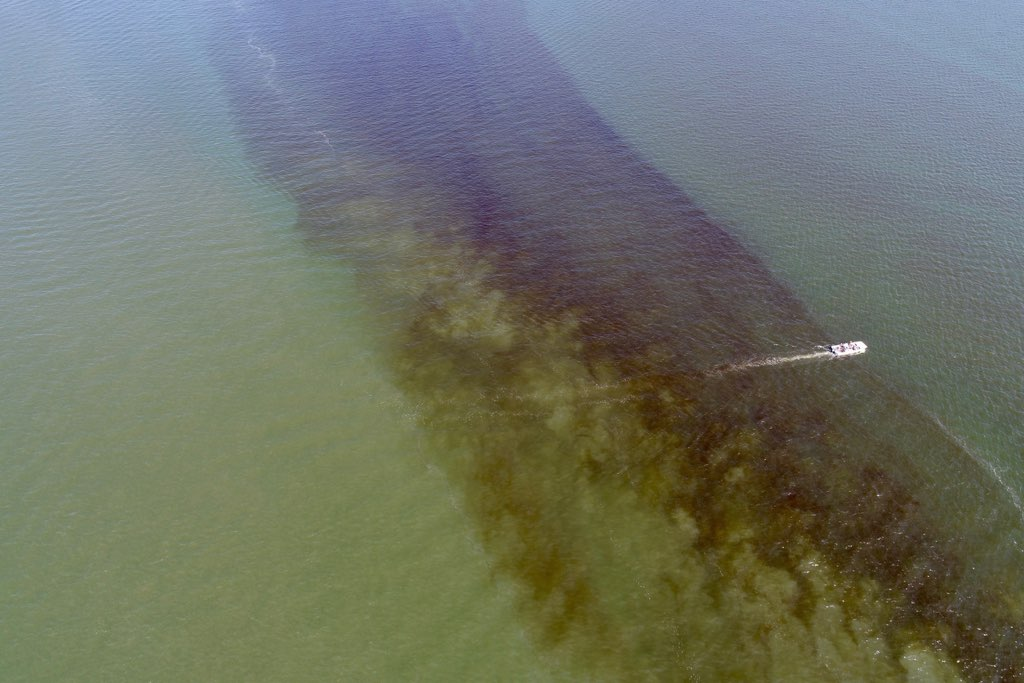 A VIMS research vessel passes through a bloom streak near the mouth of the York River on July 27, 2017. Researchers aboard the vessel were deploying their Dataflow sensor to sample the bloom. Drone imagery by VIMS professor Donglai Gong.
