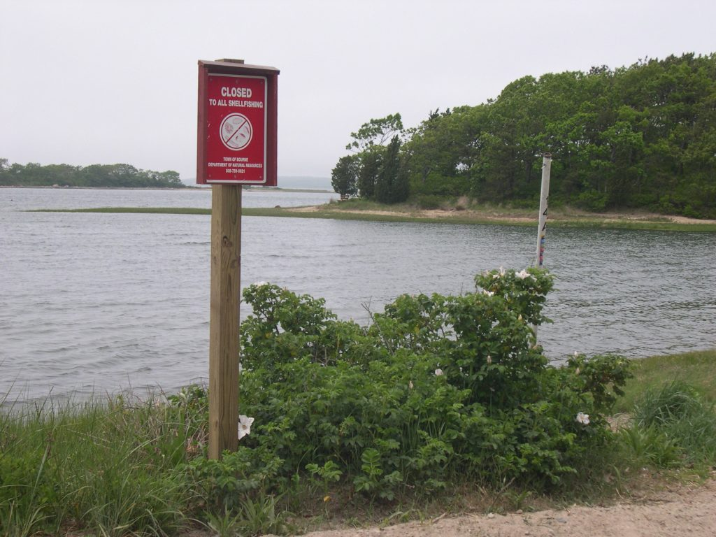 Closure signs such as these are posted when shellfish contains dangerously high levels of toxin. This image is from the massive 2005 New England red tide. (WHOI / J. Kleindinst)
