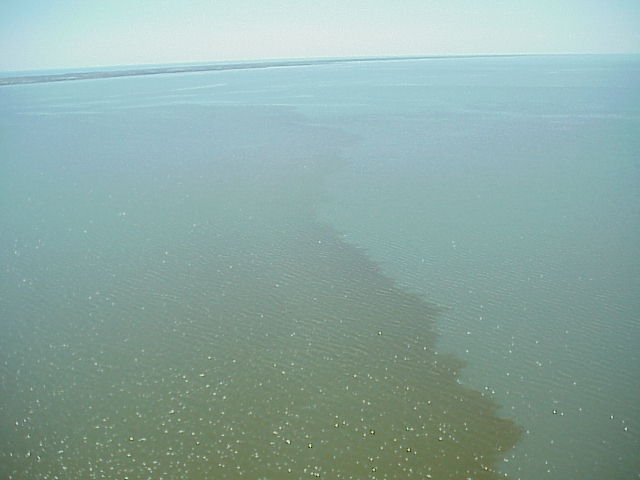 Aerial view of a red tide in Texas